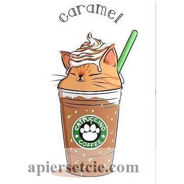 "Carte artisanale Chat ""Catpuccino Caramel"""
