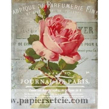 """Carte artisanale Vintage Paris """"Journal de Paris"""" et Roses"""
