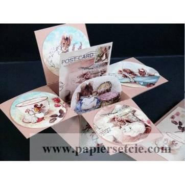 Carte 3 D Pop Up Beatrix Potter Famille Souris