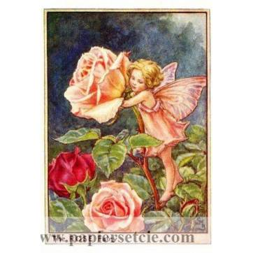 "Carte ""Fées des Fleurs"" Cicely Mary Barker ""Roses"""