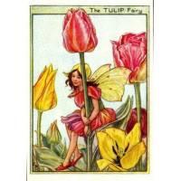 "Carte ""Fées des Fleurs"" Cicely Mary Barker ""Les Tulipes"""