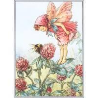 "Carte ""Fées des Fleurs"" Cicely Mary Barker ""Trèfle rose"""
