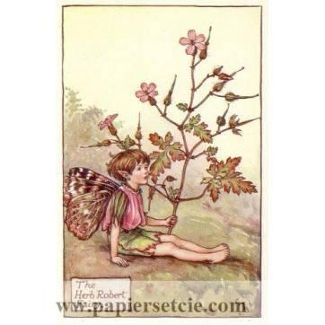 "Carte ""Fées des Fleurs"" Cicely Mary Barker ""Géranium sauvage"""