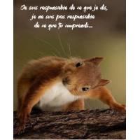 "Carte Humour Ecureuil ""Je suis responsable de ce que je dis, je ne suis pas responsable de ce que tu comprends!"""