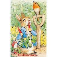 Carte Anniversaire Beatrix Potter Peter Rabbit et carottes