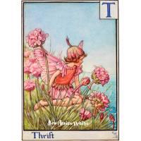 Carte Anniversaire Fées des Fleurs  Fleur rose de bord de mer