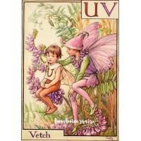 Carte Anniversaire Fées des Fleurs Vetch