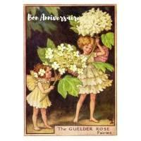 Carte Anniversaire Fées des Fleurs Viorne