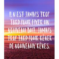 """Carte citation Bonheur:"""" Il n'est jamais trop tard pour fixer un nouveau but, jamais trop tard pour rêver de nouveaux rêves"""""""