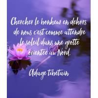 """Carte citation Bonheur: Chercher le bonheur en dehors de nous..."""""""