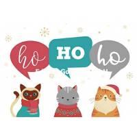 Carte Joyeux Noël ou Nouvel An 3 Chats Ho HO Ho