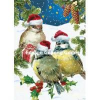 Carte Nouvel An Carola Pabst 3 oiseaux avec bonnet