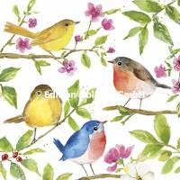 Carte Anniversaire Carola Pabst 4 oiseaux et Fleurs