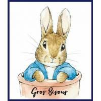 """Carte """"Gros Bisous"""" Beatrix Potter Peter R dans pot de terre"""