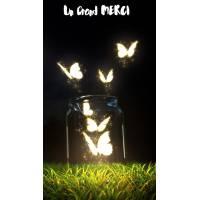 Carte Un Grand Merci Bocal et Papillons lumineux