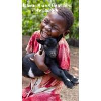 """Citation Bonheur """"Le Bonheur est un rêve d'enfant réalisé dans l'âge adulte"""""""