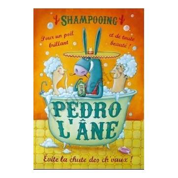 Carte Amandine Piu  Pedro l'Ane