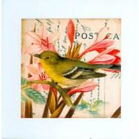 Carte artisanale  shabby chic oiseau vert et fleurs