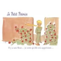 """Carte Citation Le Petit Prince """"Il y a une fleur...je crois qu'elle m'a apprivoisé"""""""