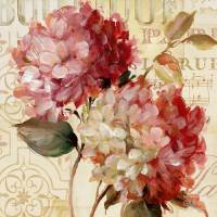 Carte vintage Lisa Audit Hortensias