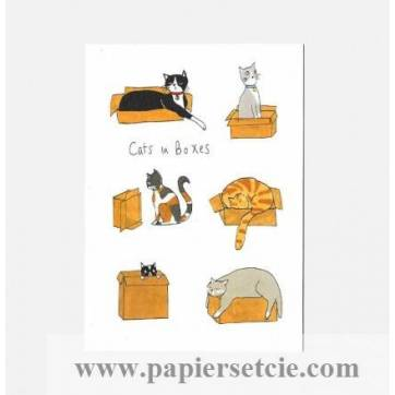 Carte Joyeux Anniversaire Sophie Swindells Cats In Boxes