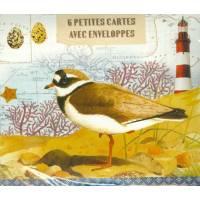 Paquet de 6 petites cartes et enveloppes Oiseaux de Mer de Gwenaëlle Trolez