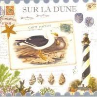 Carte d'art Gwenaëlle Trolez Sur la Dune