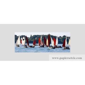 Carte panoramique Frédéric Buxin Semaine du Golfe