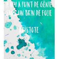 "Carte Citation Humour ""Il n'y a point de génie sans un brin de folie"" Aristote"